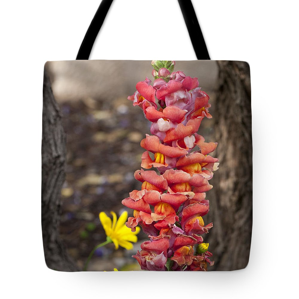 Wildflowers Tote Bag featuring the photograph Spring Framed by Erika Weber