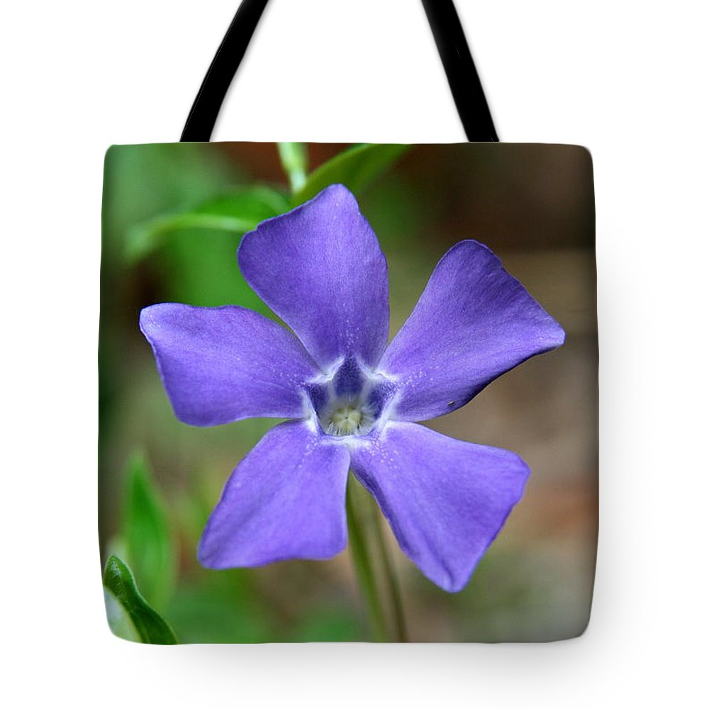 Flower Tote Bag featuring the photograph Spring Has Sprung by Neal Eslinger