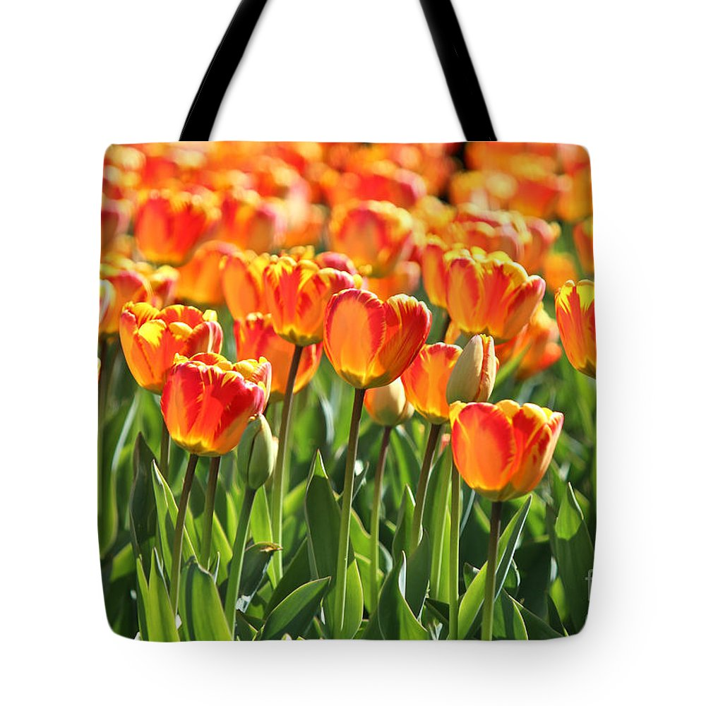 Boston Tote Bag featuring the photograph Spring In Beantown by Beverly Tabet