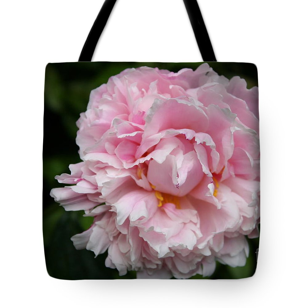 Peony Tote Bag featuring the photograph Spring In Pink by Christiane Schulze Art And Photography