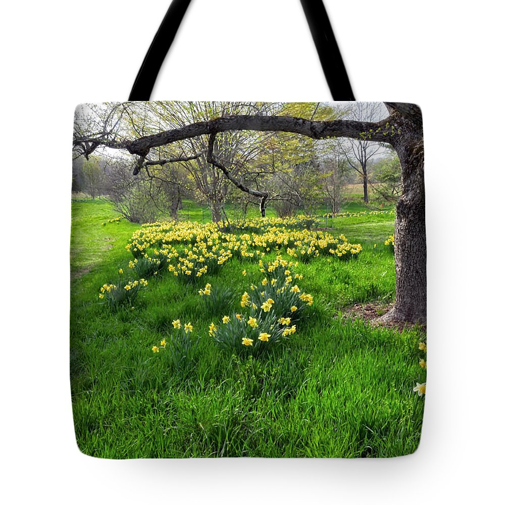 Spring Tote Bag featuring the photograph Spring Is Here by Dave Mills
