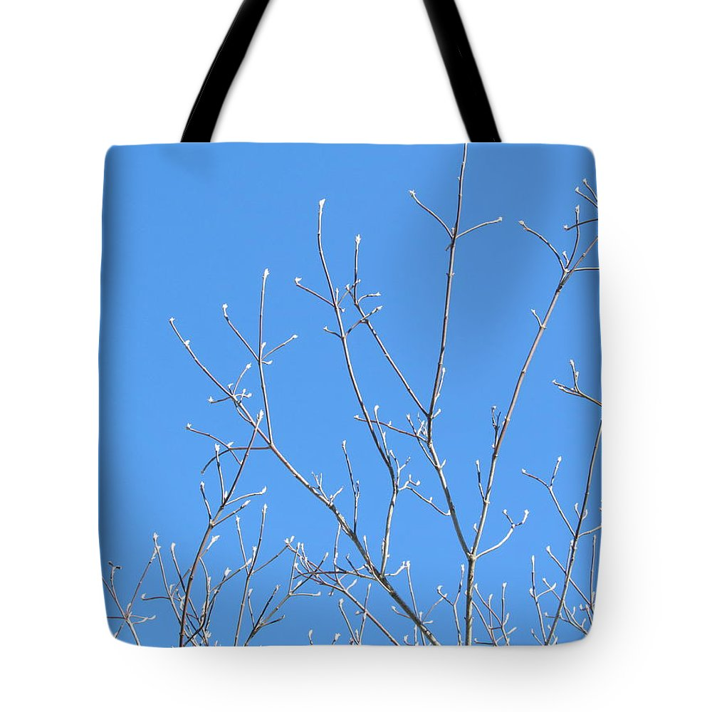 Spring Tote Bag featuring the photograph Spring Is In The Air by Tina M Wenger
