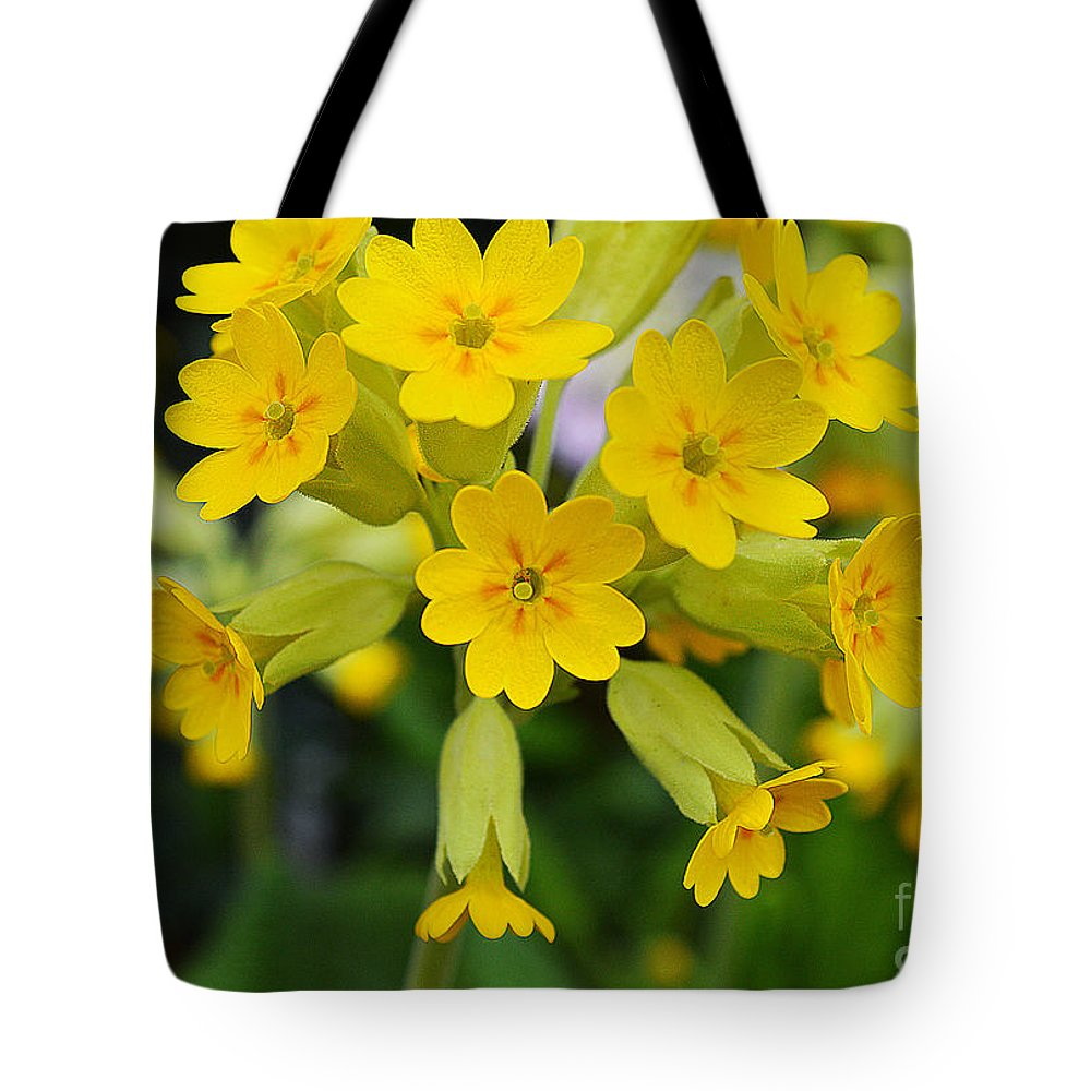 Wildflower Tote Bag featuring the photograph Spring Lyric by Felicia Tica