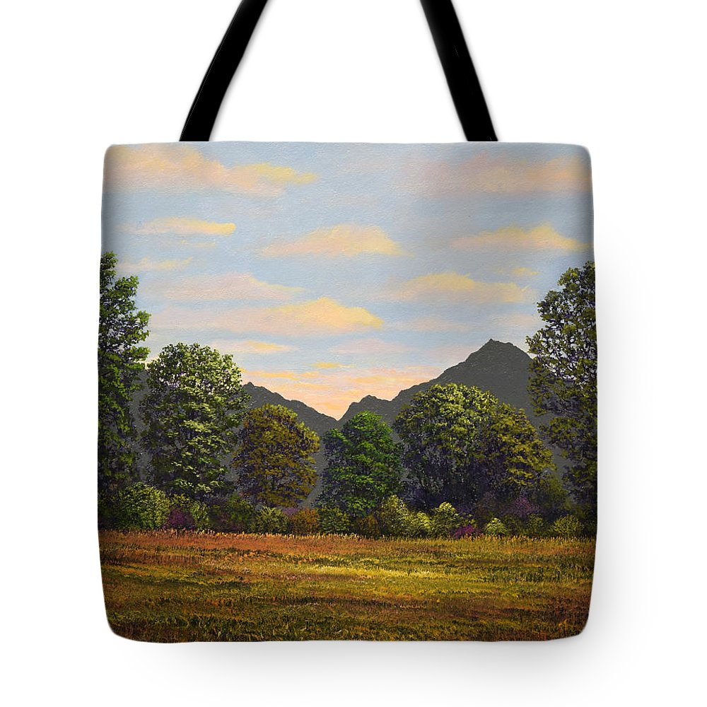 Spring Meadow At Sutter Buttes Tote Bag featuring the painting Spring Meadow At Sutter Buttes by Frank Wilson
