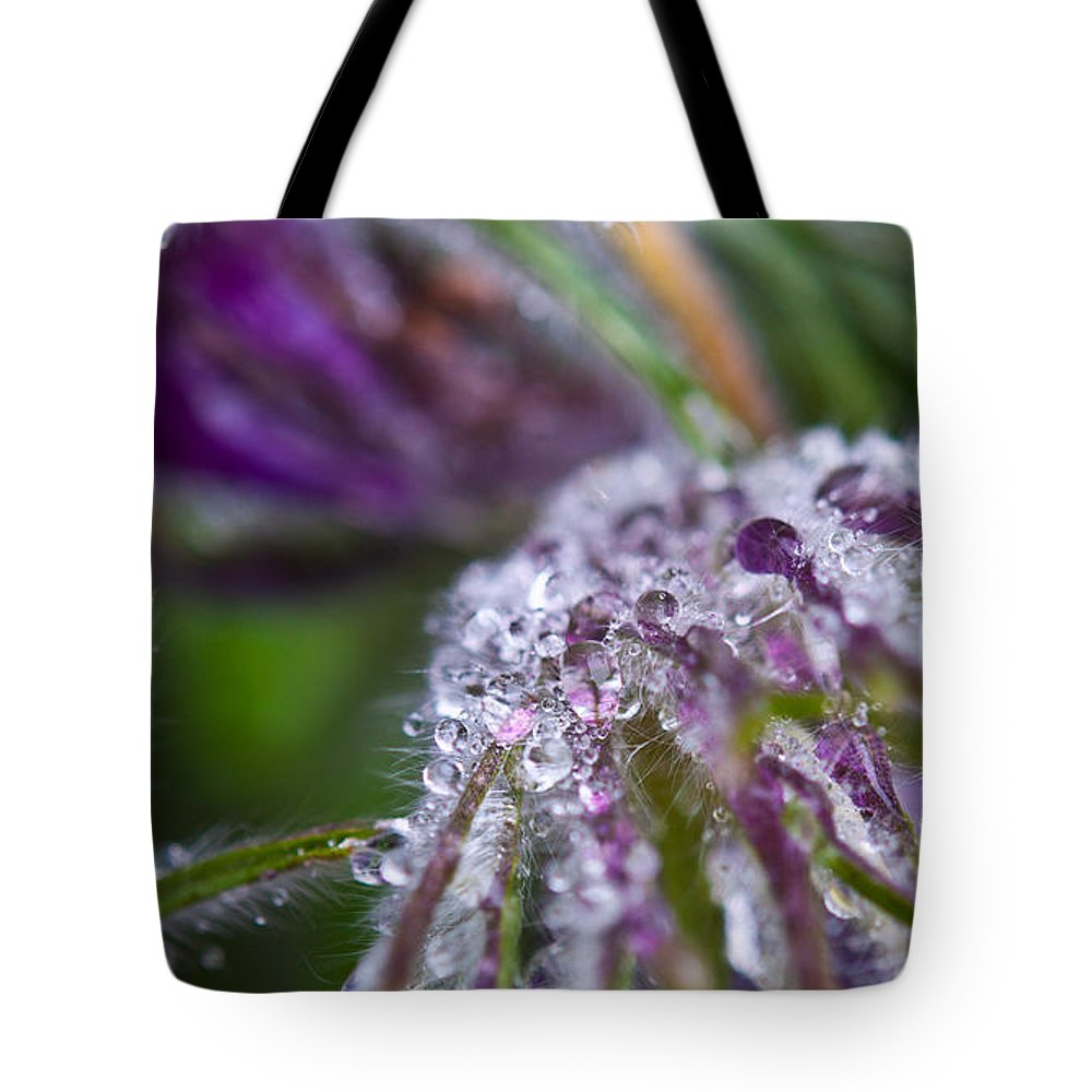 Spring Flowers Photography Tote Bag featuring the photograph Spring Rain by Sabine Edrissi