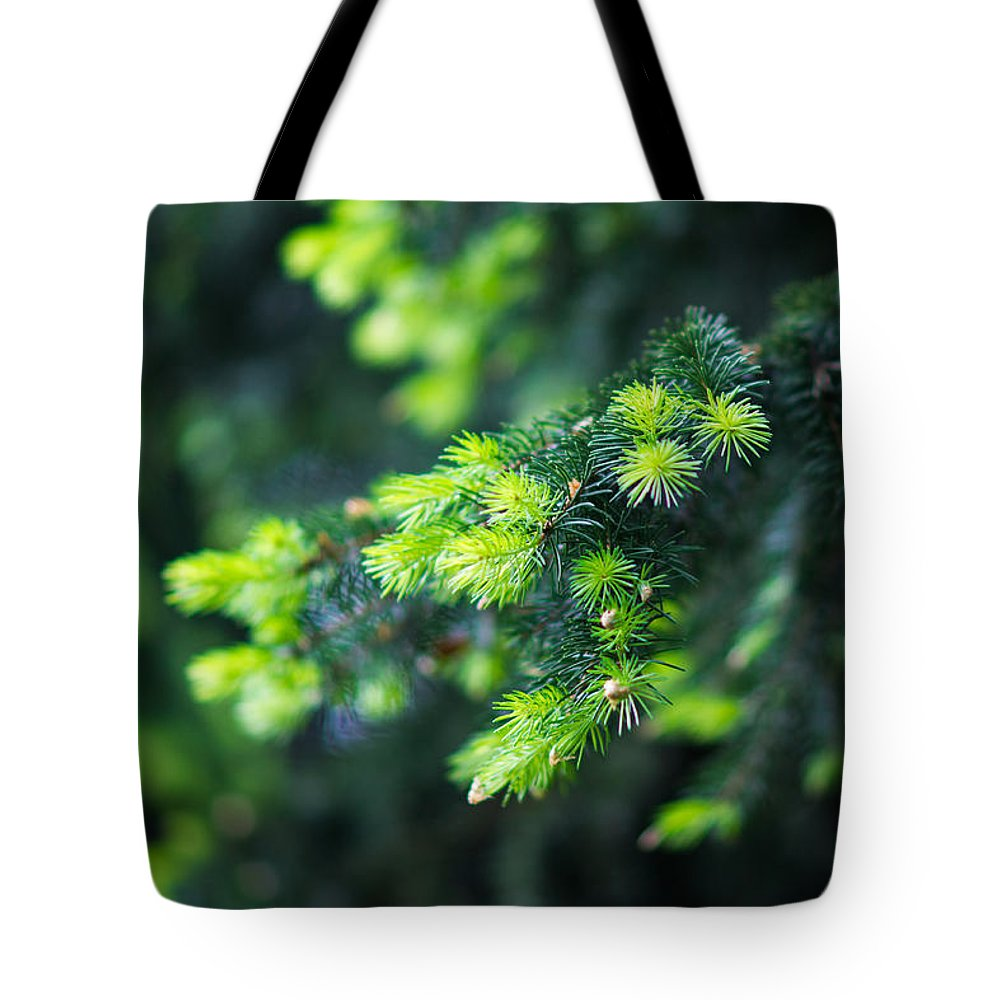 Abstract Tote Bag featuring the photograph Spring Shoots by Alexander Senin
