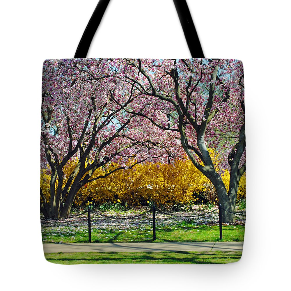 Cherry Tote Bag featuring the photograph Spring Walk by Jost Houk