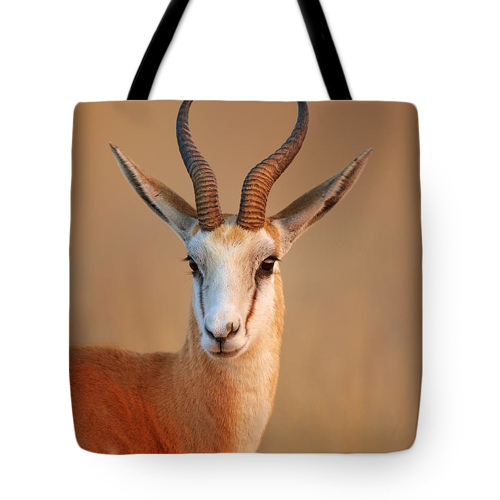 Wild Tote Bag featuring the photograph Springbok Portrait by Johan Swanepoel
