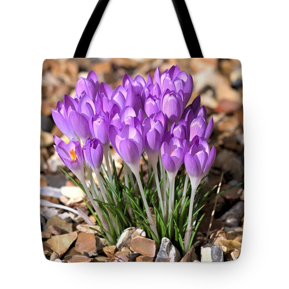 Spring Flowers Tote Bag featuring the photograph Springflowers by Gordon Auld