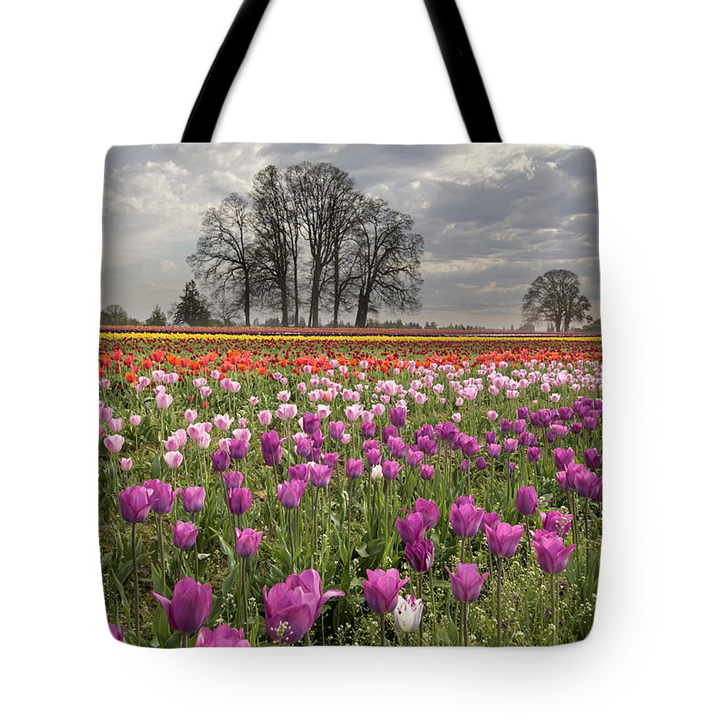Tulips Tote Bag featuring the photograph Springtime At Tulip Farm by Jit Lim