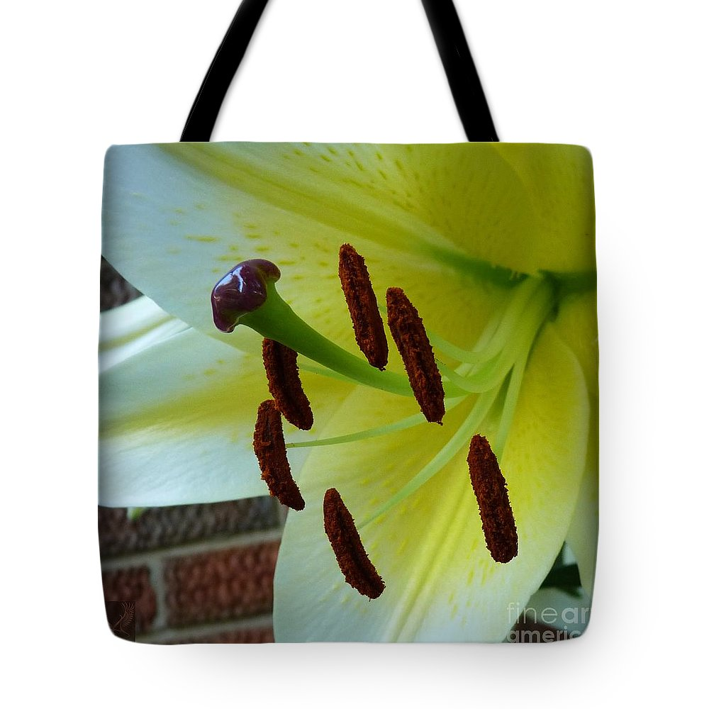 Lily Tote Bag featuring the photograph Sq Lily Morning by Dale Crum