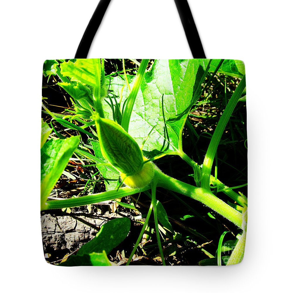Bud Tote Bag featuring the photograph Squash Bud by Tina M Wenger