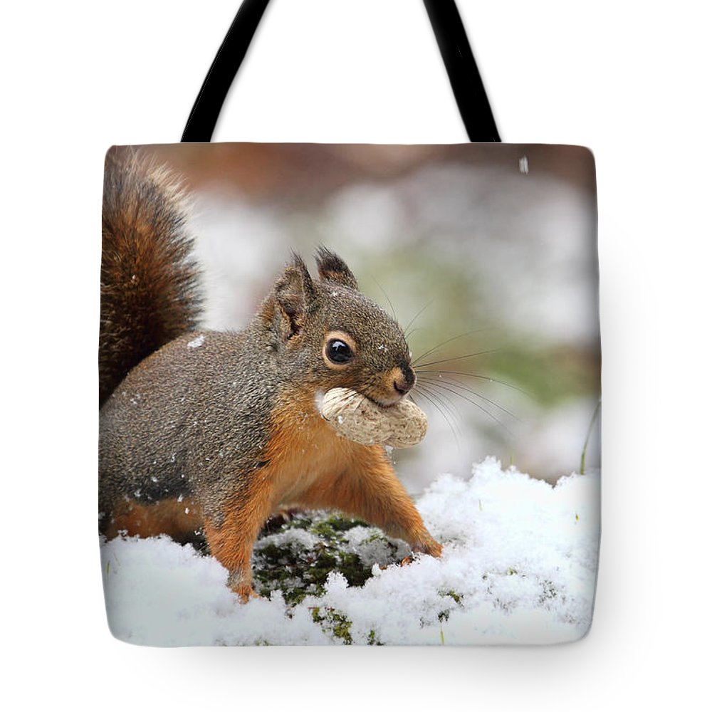 Squirrels Tote Bag featuring the photograph Squirrel In Snow by Peggy Collins