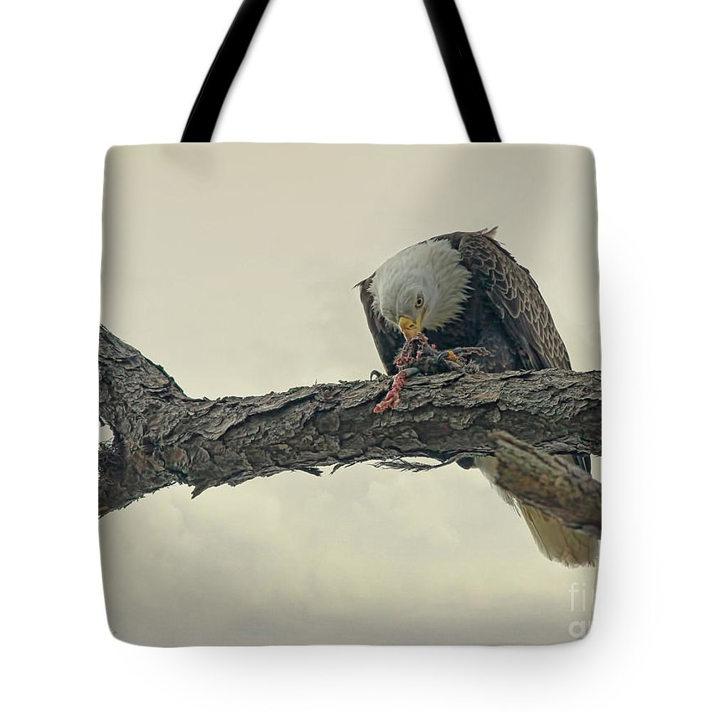 Eagle Tote Bag featuring the photograph Squirrel Lunch by Deborah Benoit