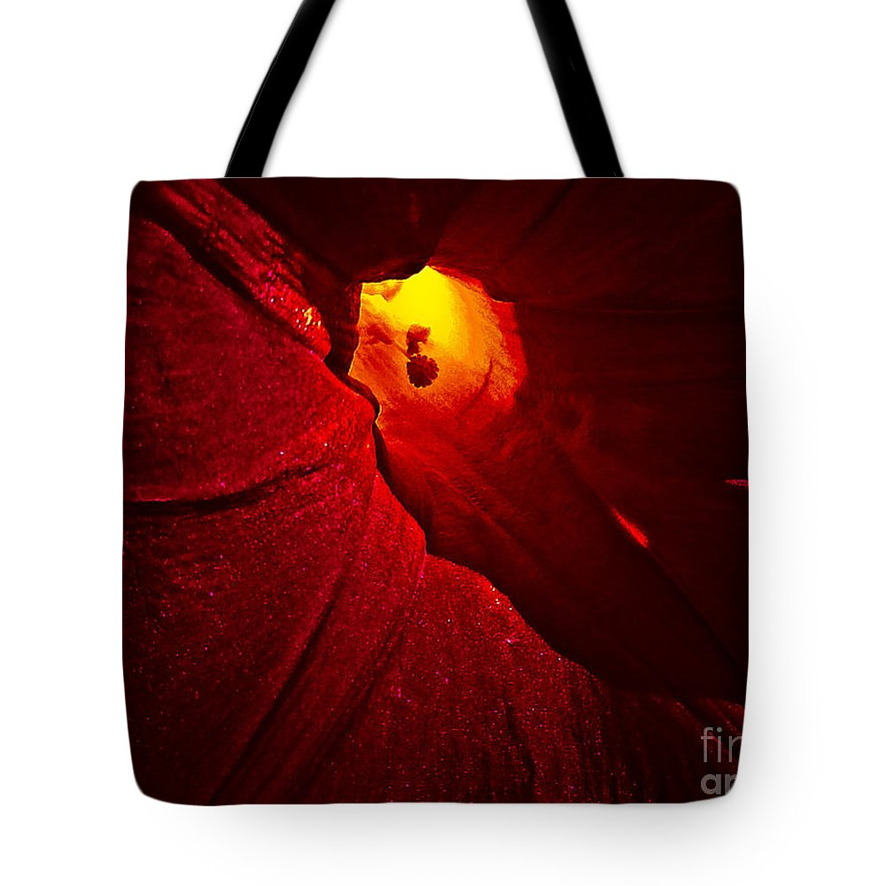 Nature Tote Bag featuring the photograph Tunnel by Fei A