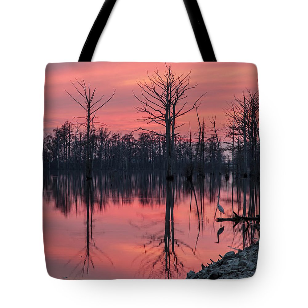 Outdoors Tote Bag featuring the photograph Standing Guard by Larrybraunphotography.com