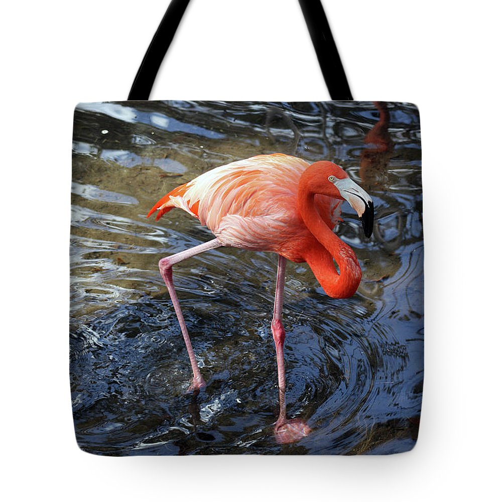 Flamingo Tote Bag featuring the photograph Standing On Long Legs by Christiane Schulze Art And Photography