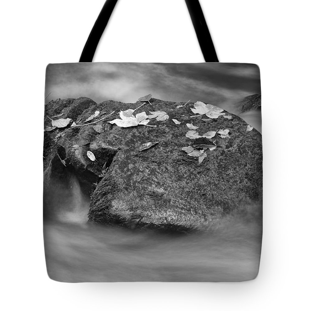 Water Tote Bag featuring the photograph Standing Still by Miguel Winterpacht