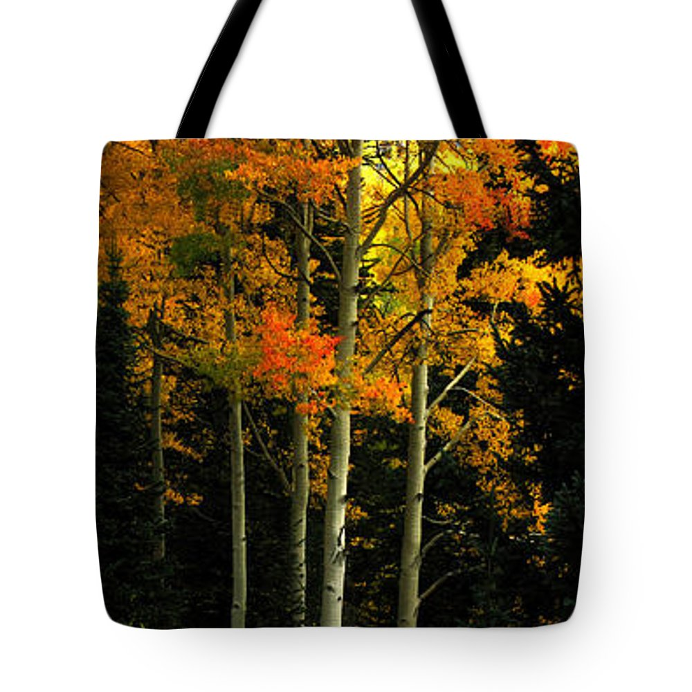 Aspens Tote Bag featuring the photograph Standing Tall by Carol Milisen