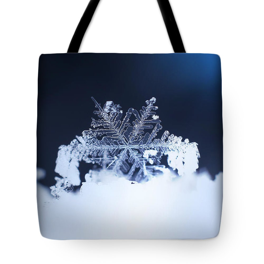 Tote Bag featuring the photograph Standing Tall by Rob Blair