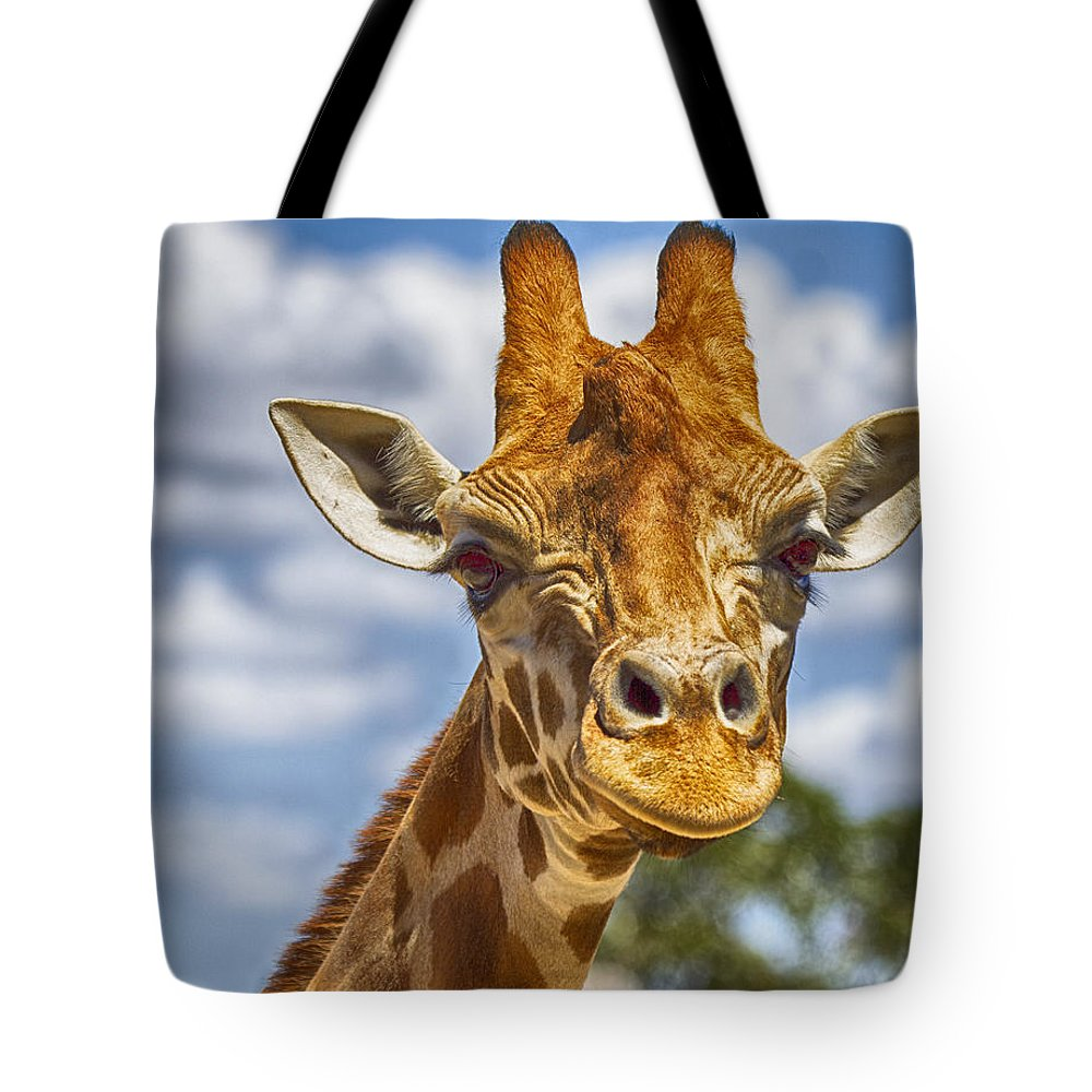 Giraffe Tote Bag featuring the photograph Standing Tall V2 by Douglas Barnard