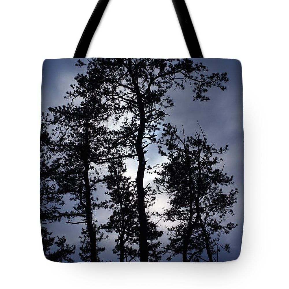 Trees Tote Bag featuring the photograph Standing Talls by Jeffery L Bowers