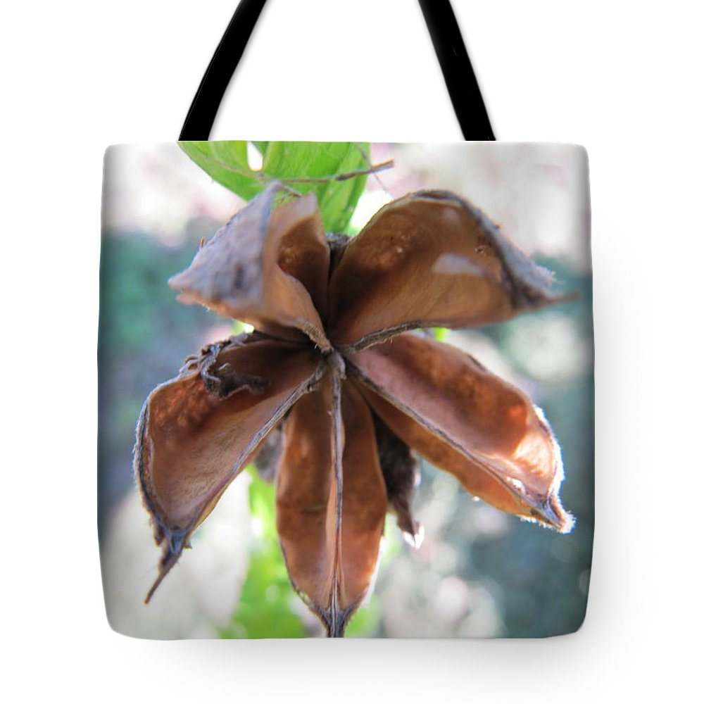 Flower Tote Bag featuring the photograph Star Flower by Tina M Wenger