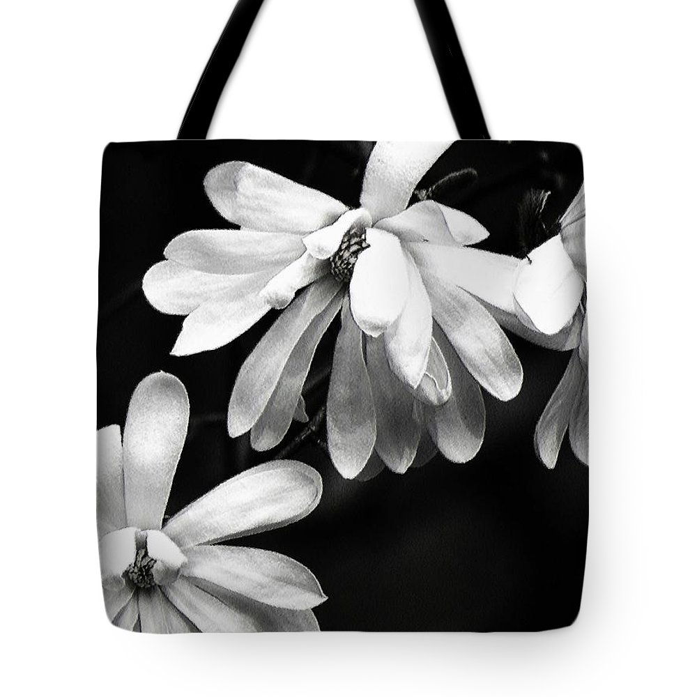 Carol R Montoya Tote Bag featuring the photograph Star Magnolia In Black And White by Carol Montoya