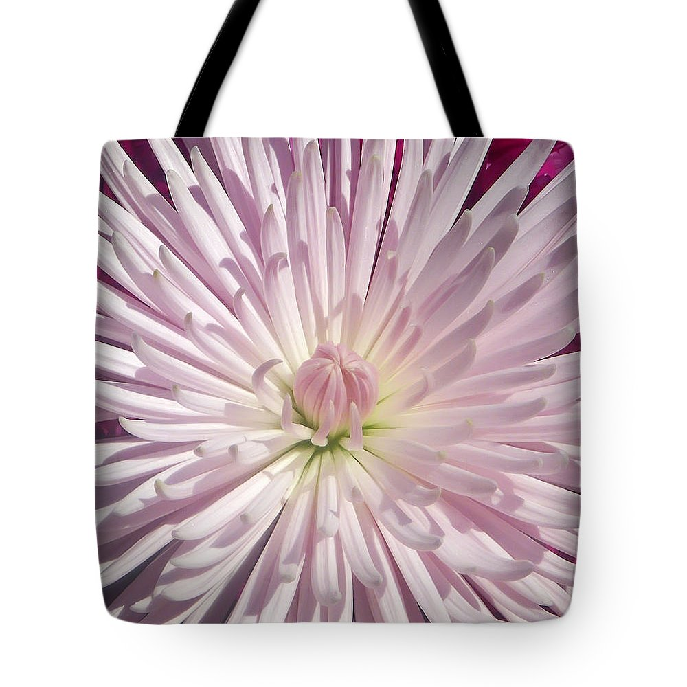 Chrysanthemum Tote Bag featuring the photograph Starburst by Aimee L Maher ALM GALLERY