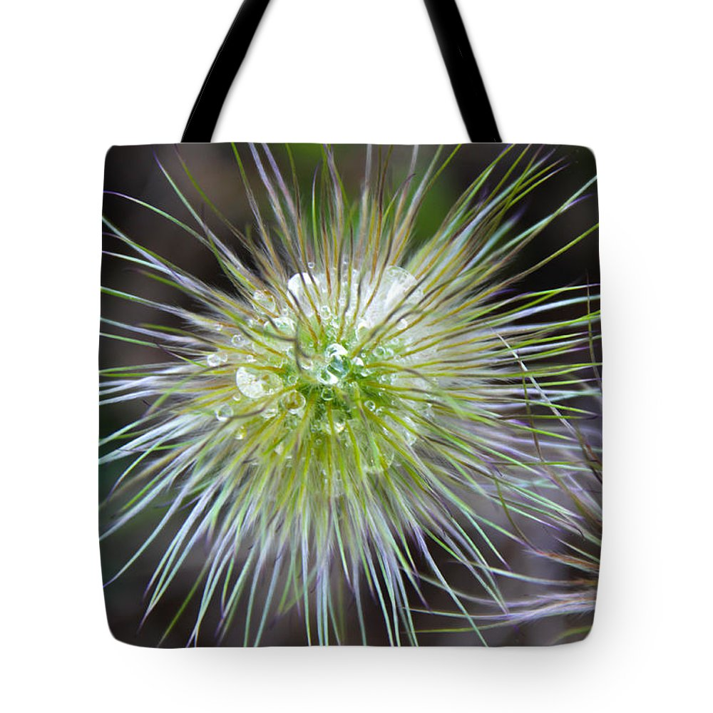 Flower Tote Bag featuring the photograph Starburst by J Havnen