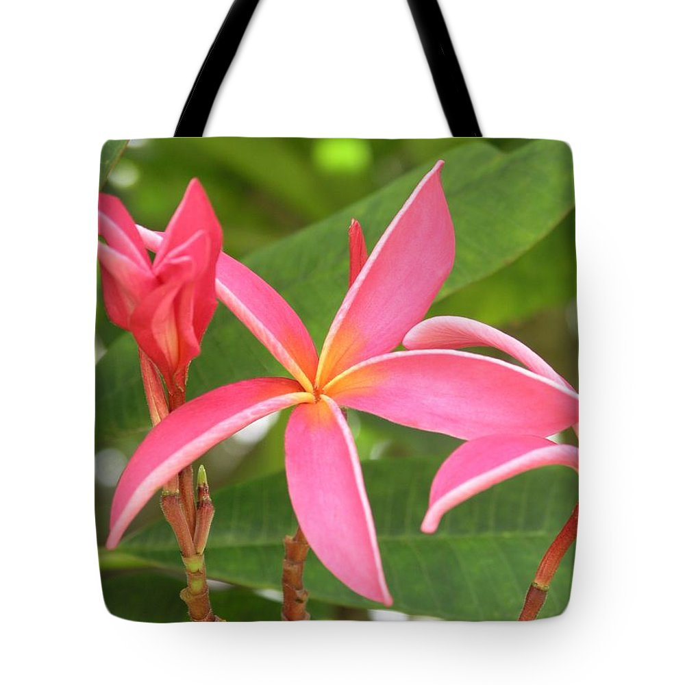 Plumeria Tote Bag featuring the photograph Starburst Plumeria by Mary Deal