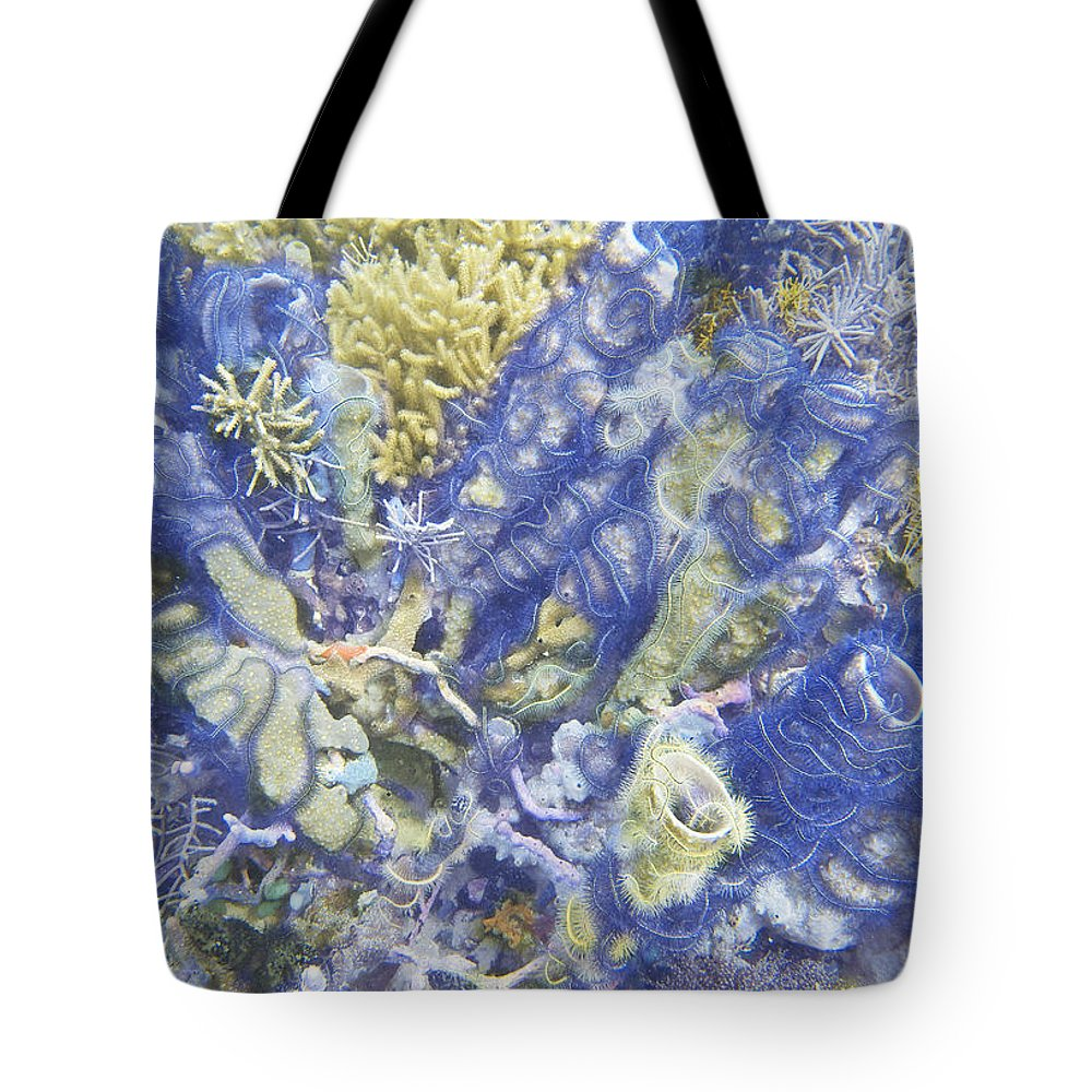 Ocean Tote Bag featuring the photograph Starburst by Terry Melius