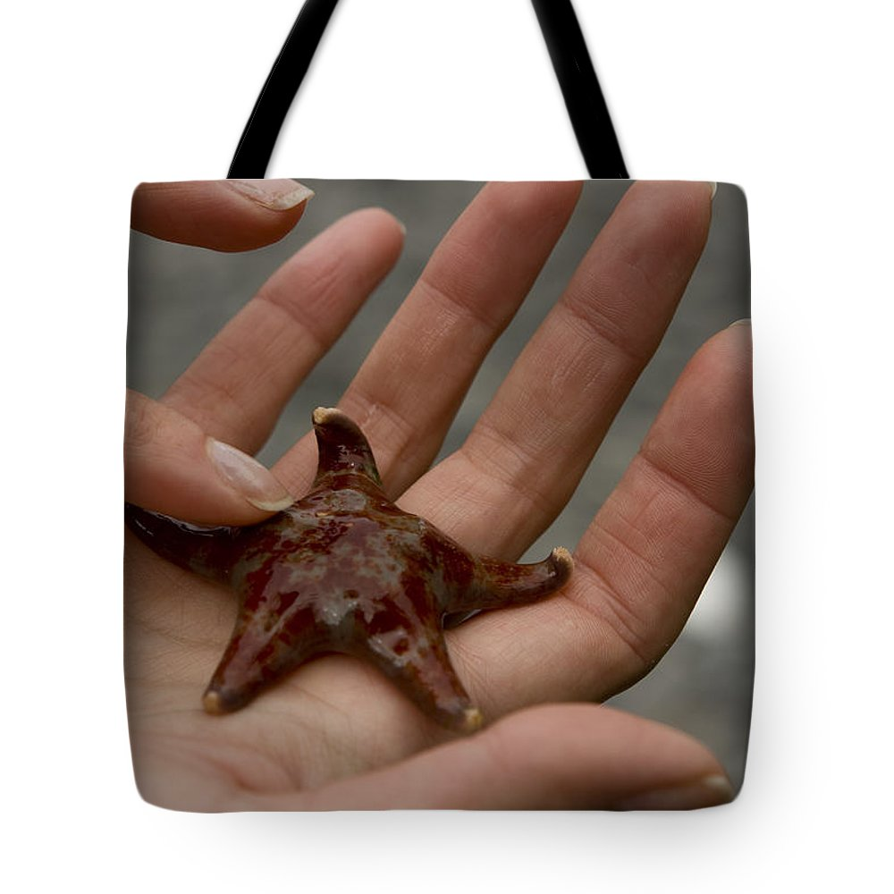 Starfish Tote Bag featuring the photograph Starfish 1 by Sandy Swanson