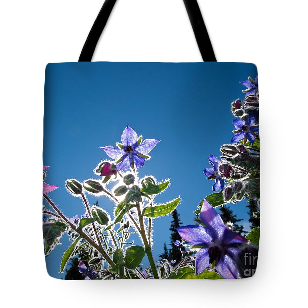 Autumn Tote Bag featuring the photograph Starflower Borago Officinalis by Stephan Pietzko