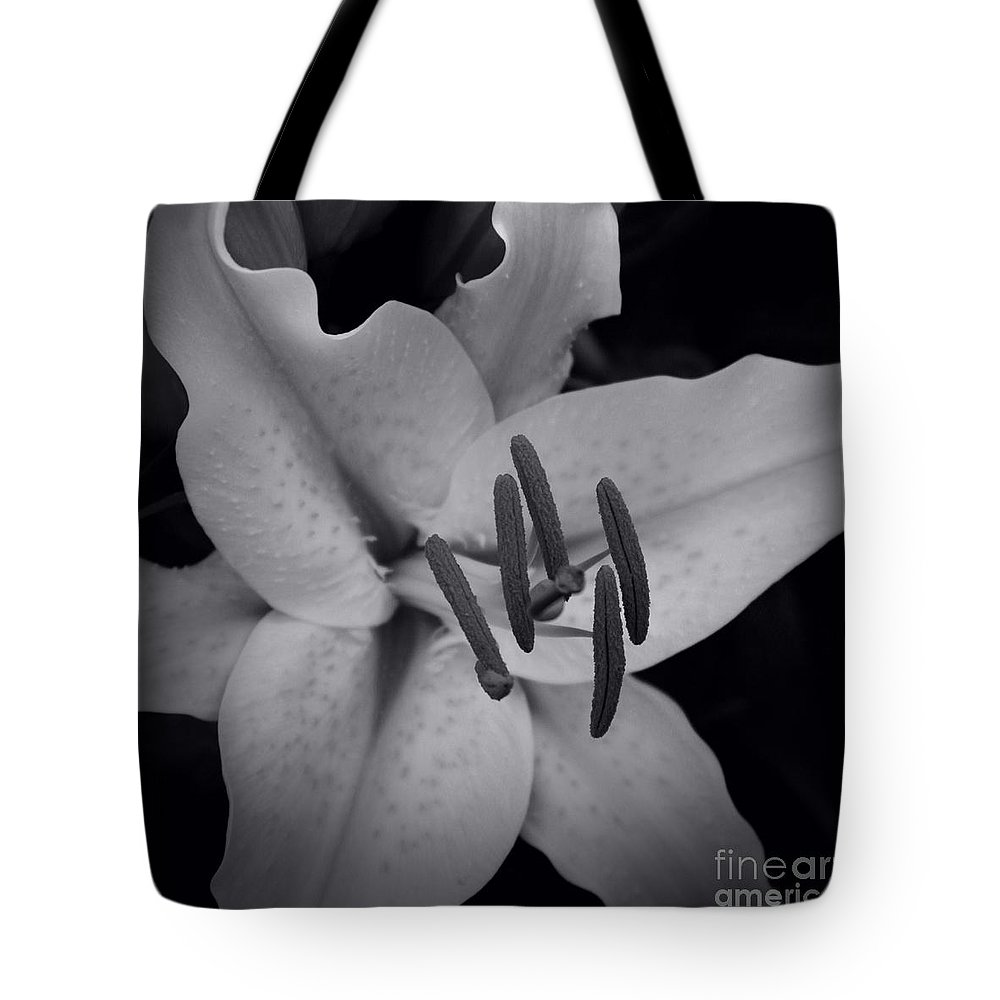 Aloha Tote Bag featuring the photograph Stargazer by Sharon Mau