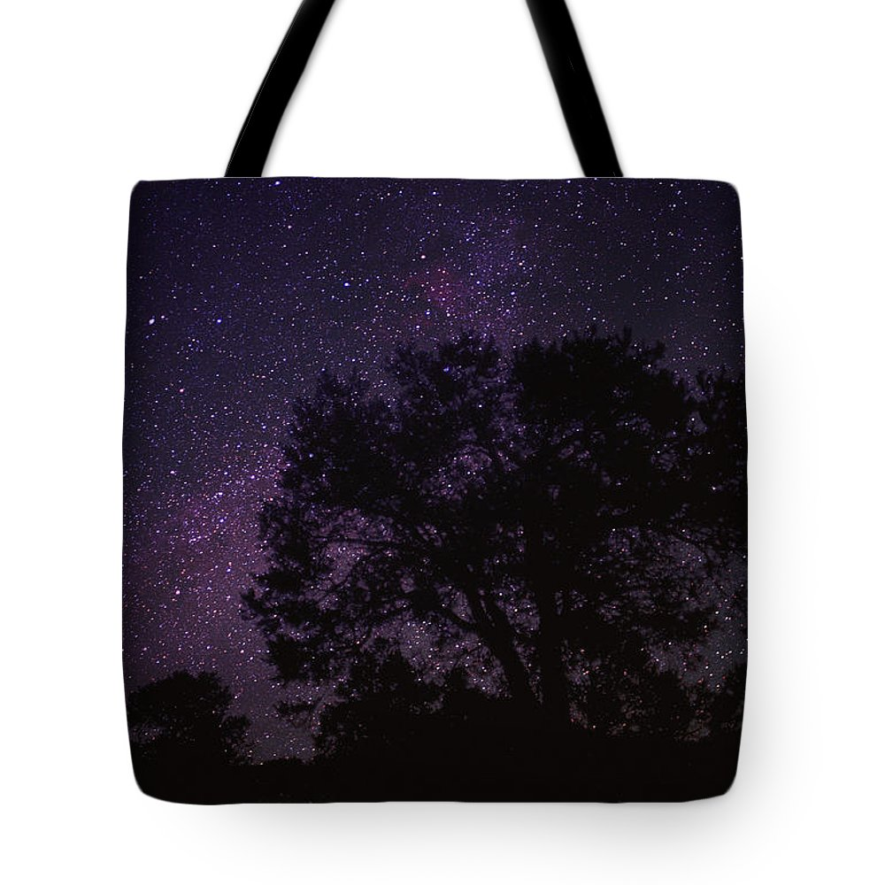 Color Image Tote Bag featuring the photograph Starry Sky With Silhouetted Oak Tree by Tim Fitzharris