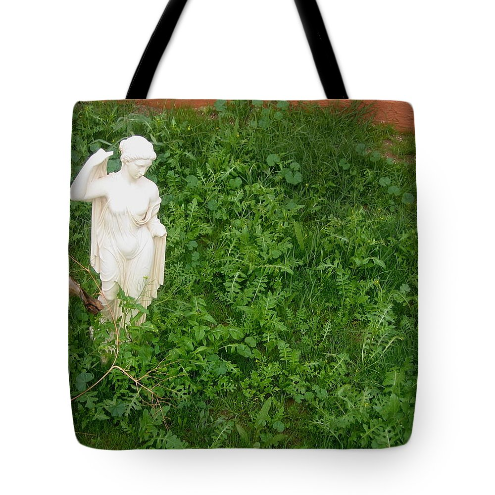 Statue Weeds Toltec Tavern Restaurant Toltec Arizona 2005 Tote Bag featuring the photograph Statue Weeds Restaurant Toltec Tavern Toltec Arizona 2005 by David Lee Guss
