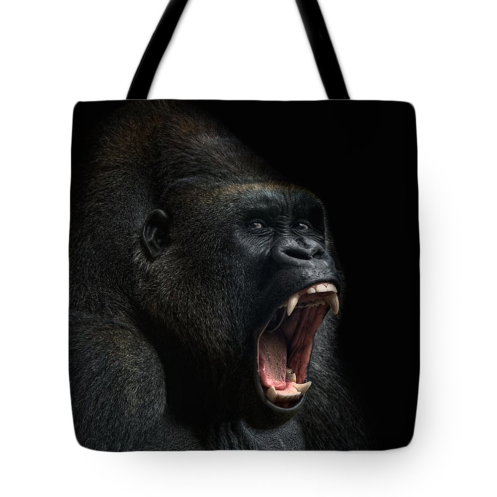 Gorilla Lifestyle Products