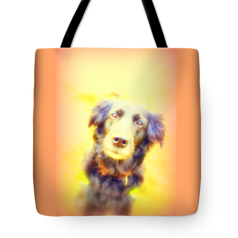 Dog Tote Bag featuring the photograph Stay With Me Until I Walk Away, But I Will Never Go Anywhere Without You by Hilde Widerberg