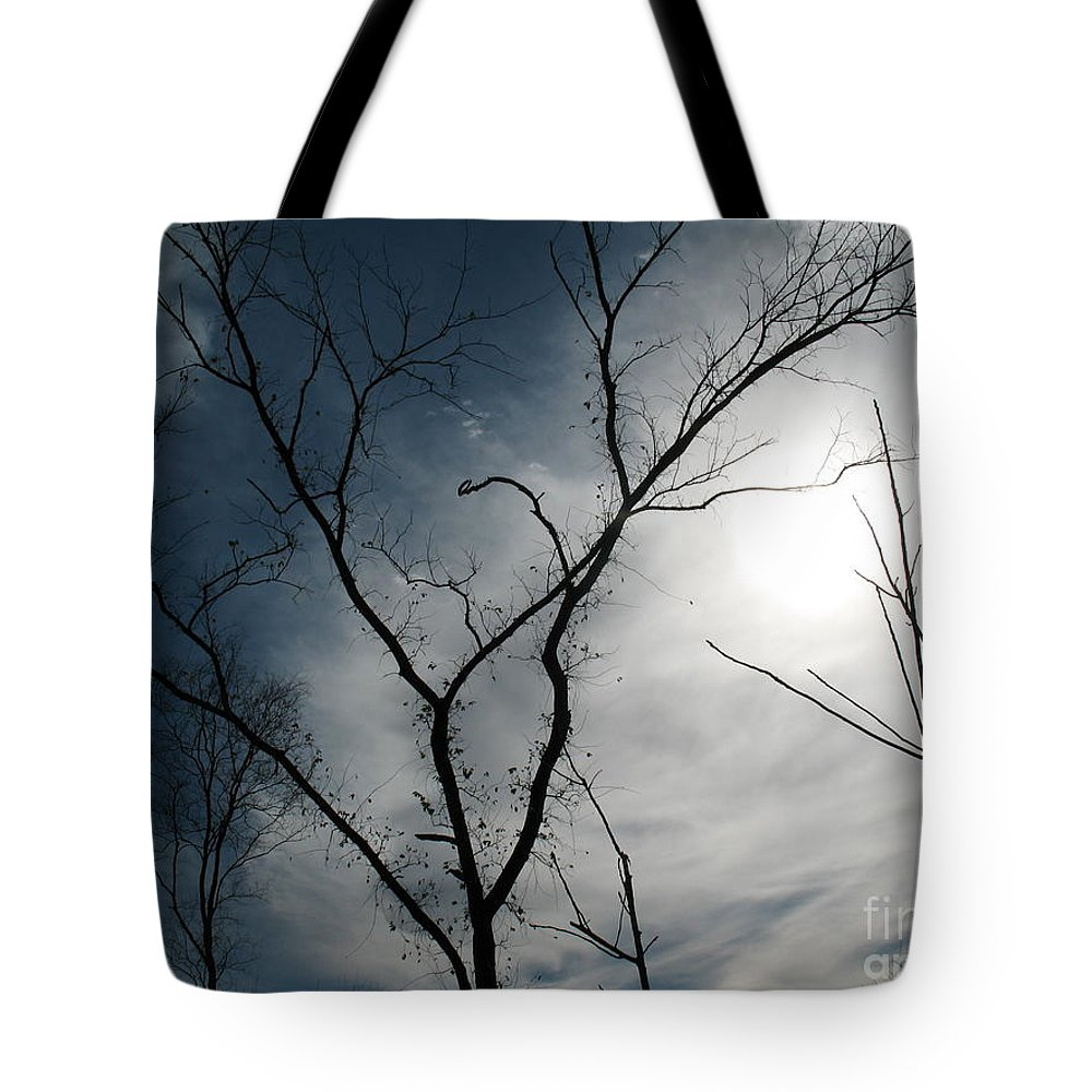 Kerisart Tote Bag featuring the photograph Steal Trees by Keri West