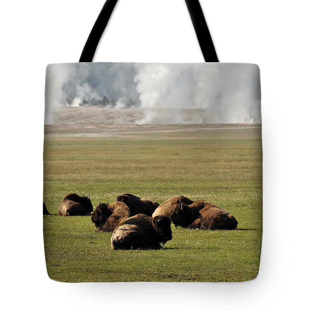 Yellowstone Tote Bag featuring the photograph Steam? What Steam? by Bruce Gourley