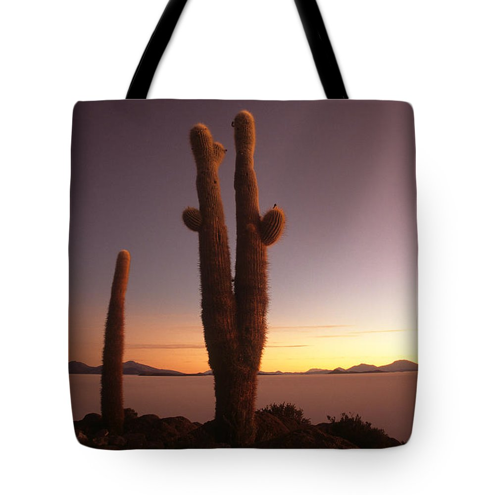 Cactus Tote Bag featuring the photograph Stick Em Up by James Brunker