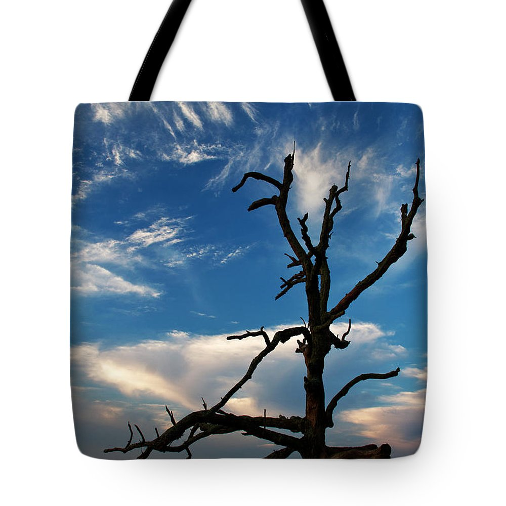 Blue Ridge Tote Bag featuring the photograph Still Beautiful by Guy Shultz