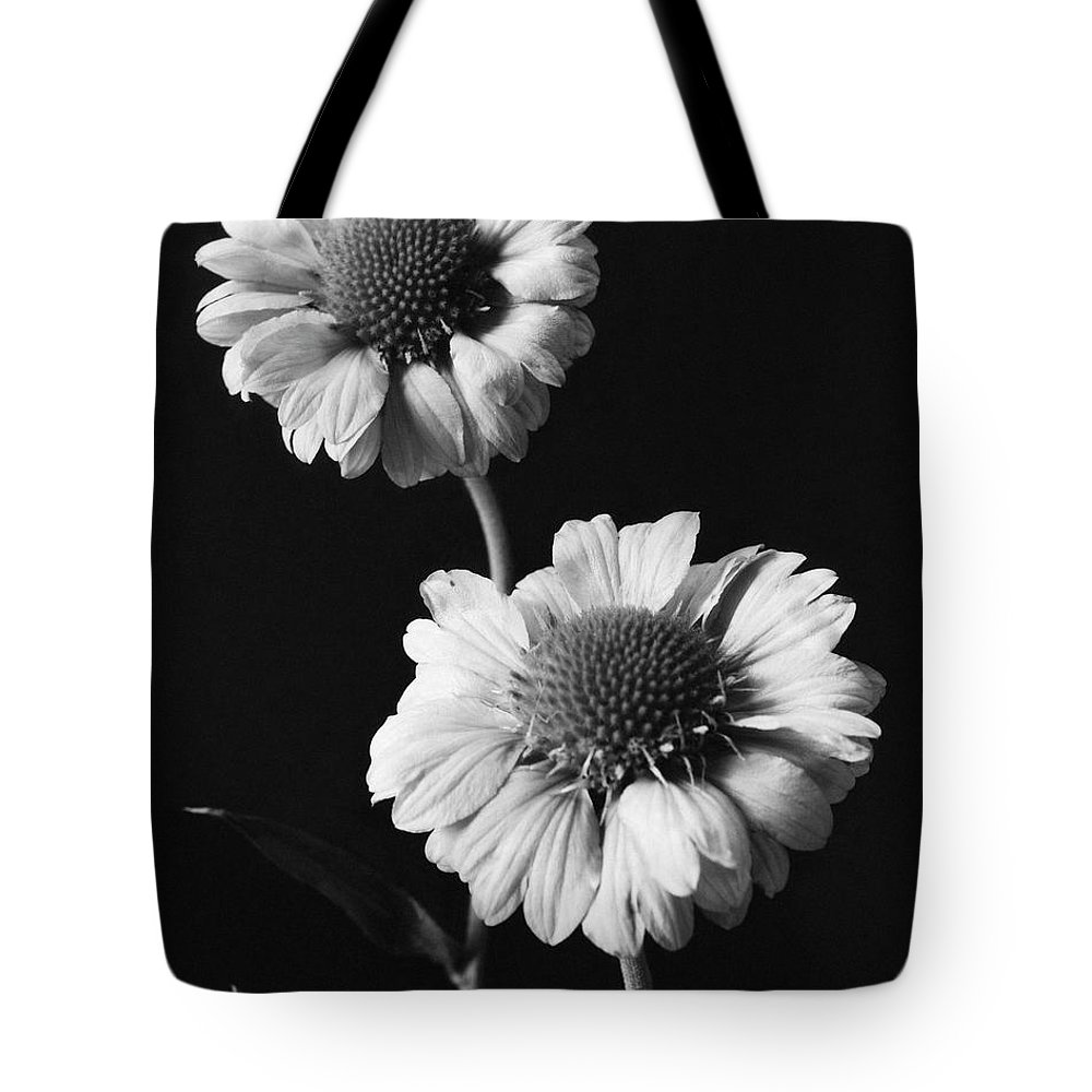 Flowers Tote Bag featuring the photograph Still Life Of Flowers by J. Horace McFarland