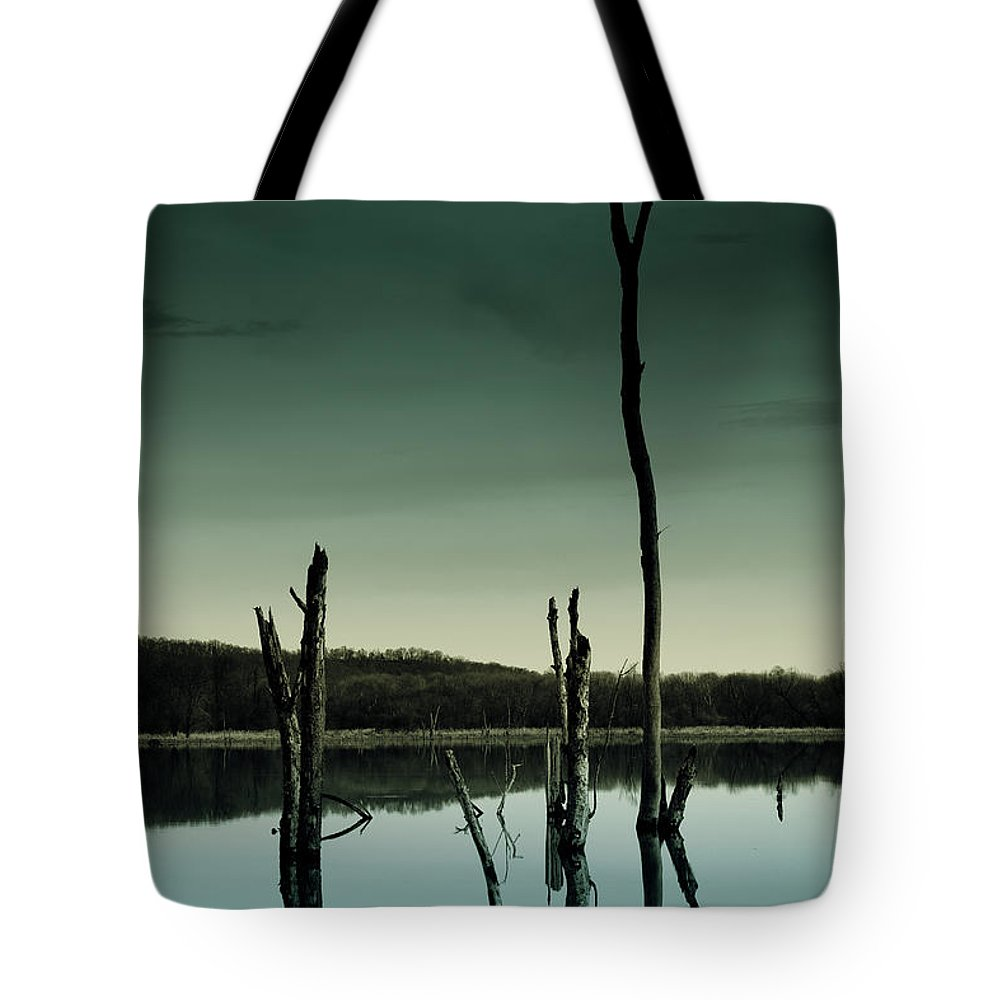 Stillness Tote Bag featuring the photograph Stillness by Shane Holsclaw