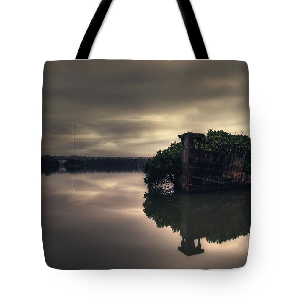 Shipwreck Tote Bag featuring the photograph Stillness Speaks by Andrew Paranavitana