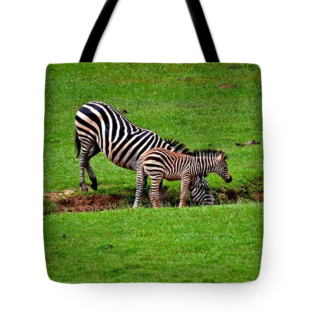 Zebras Tote Bag featuring the photograph Stopping For A Drink by Tara Potts