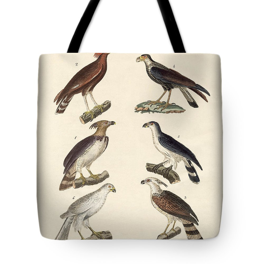 Bertuch Tote Bag featuring the drawing Strange Eagles by Splendid Art Prints