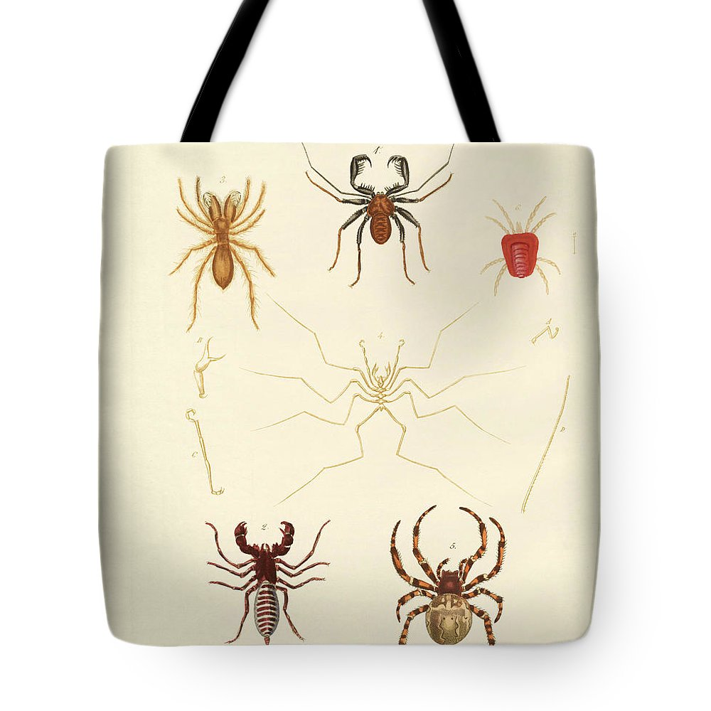 Bertuch Tote Bag featuring the drawing Strange Spiders by Splendid Art Prints