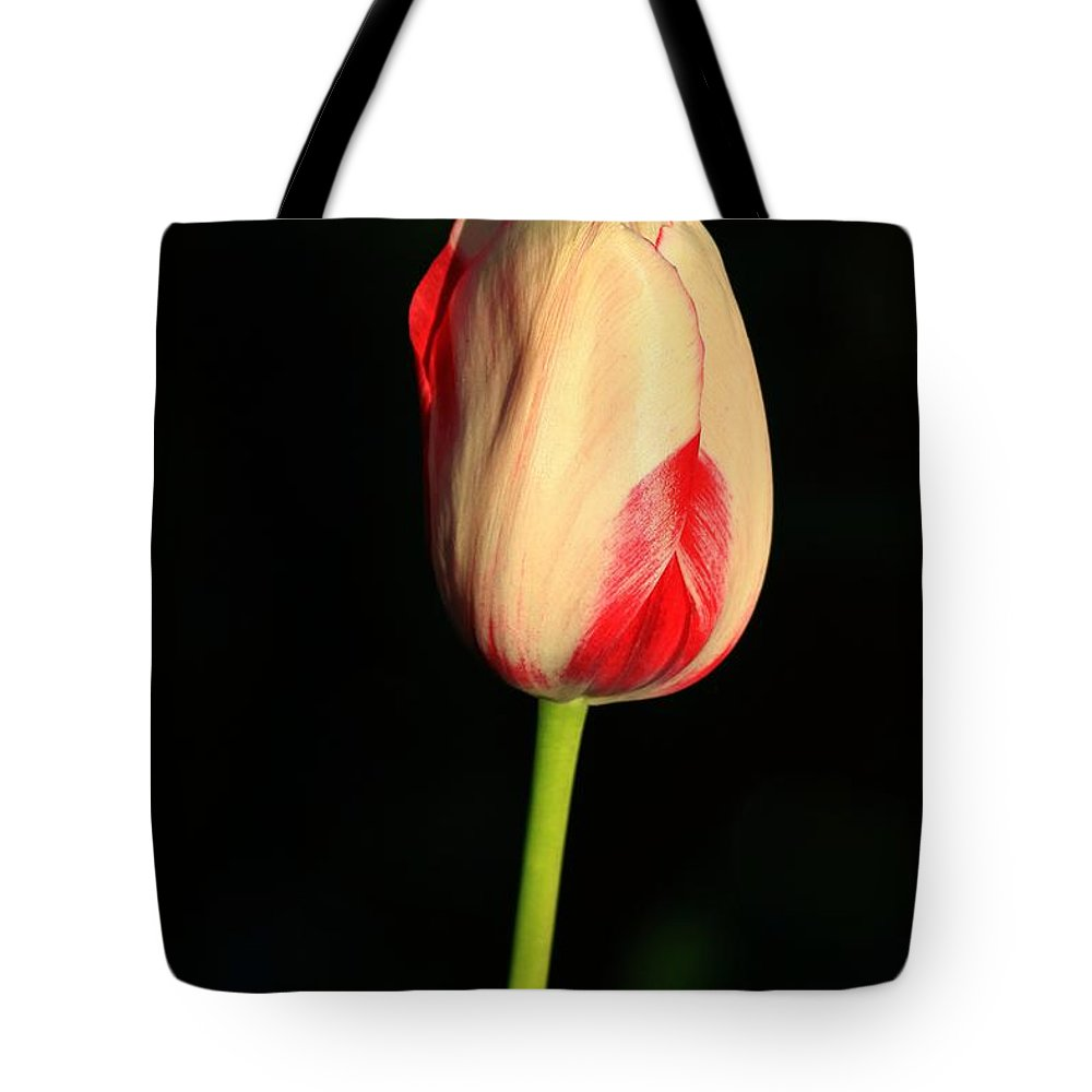 Tulip Tote Bag featuring the photograph Strawberry Cheesecake by Winston Rockwell